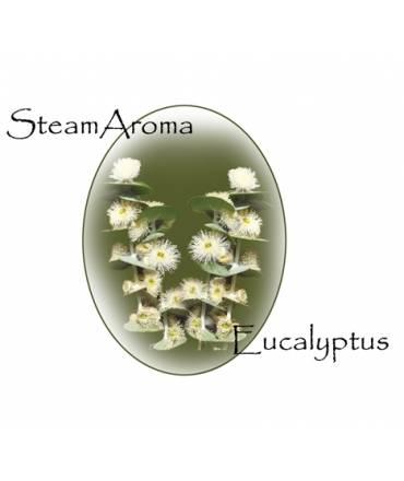 SteamAroma Eucalyptus 5 litres
