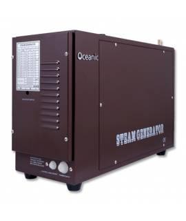 Générateur vapeur PRO usage intense